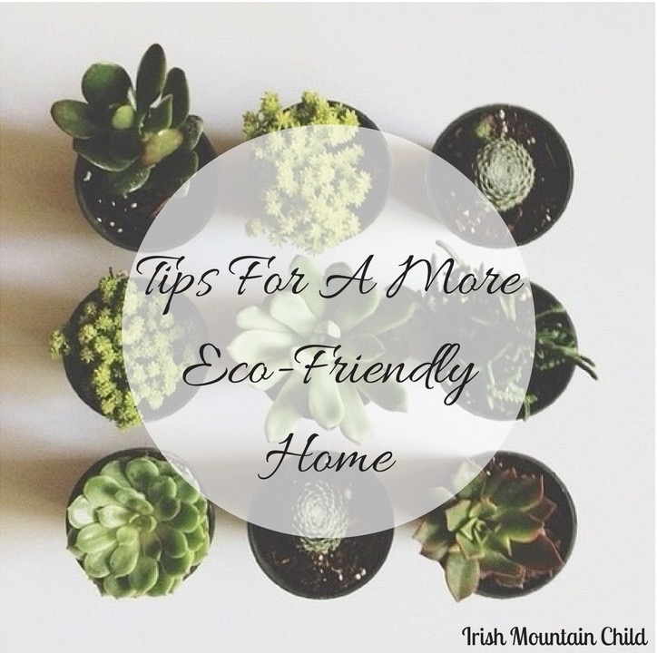 Tips For A MoreEco-Friendly Home