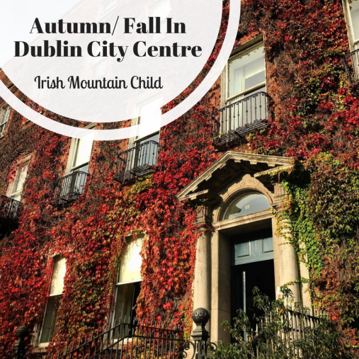 Autumn In Dublin City Centre-2